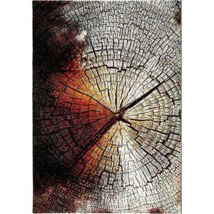 koberec Tkaný Wood 1