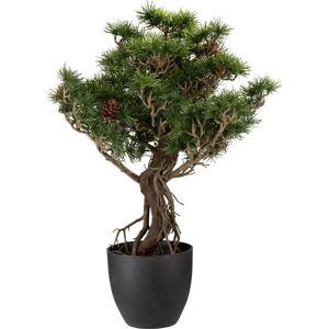 Rostlina umělá Max
